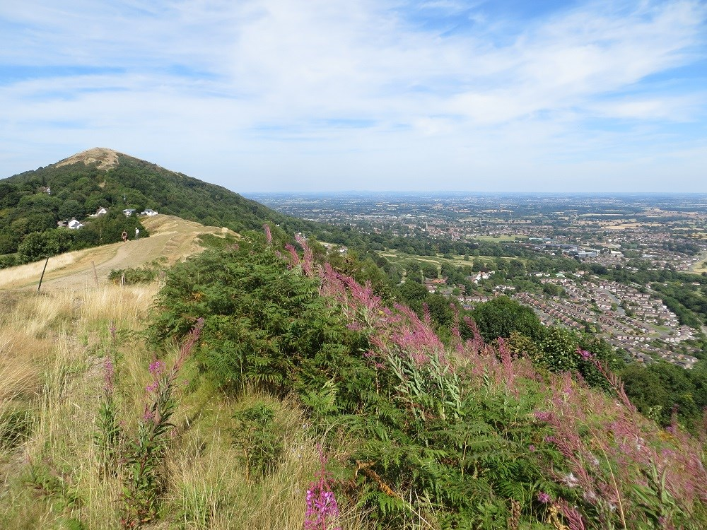 Perseverance Hill above Great Malvern Summer low res.jpg