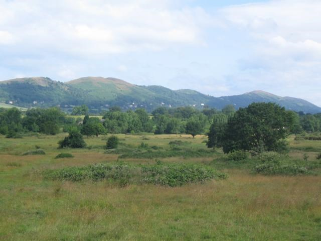Castlemorton Common.JPG